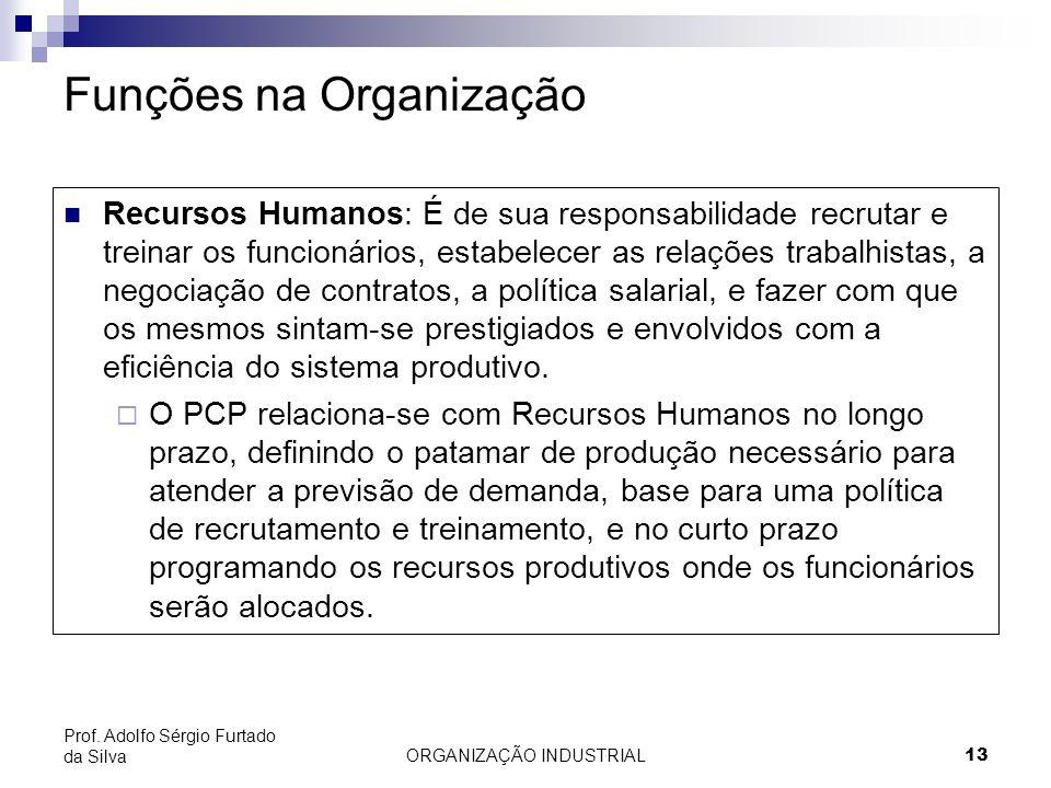 ORGANIZAÇÃO INDUSTRIAL 13 Prof. Adolfo Sérgio Furtado da Silva Funções na Organização Recursos Humanos: É de sua responsabilidade recrutar e treinar o