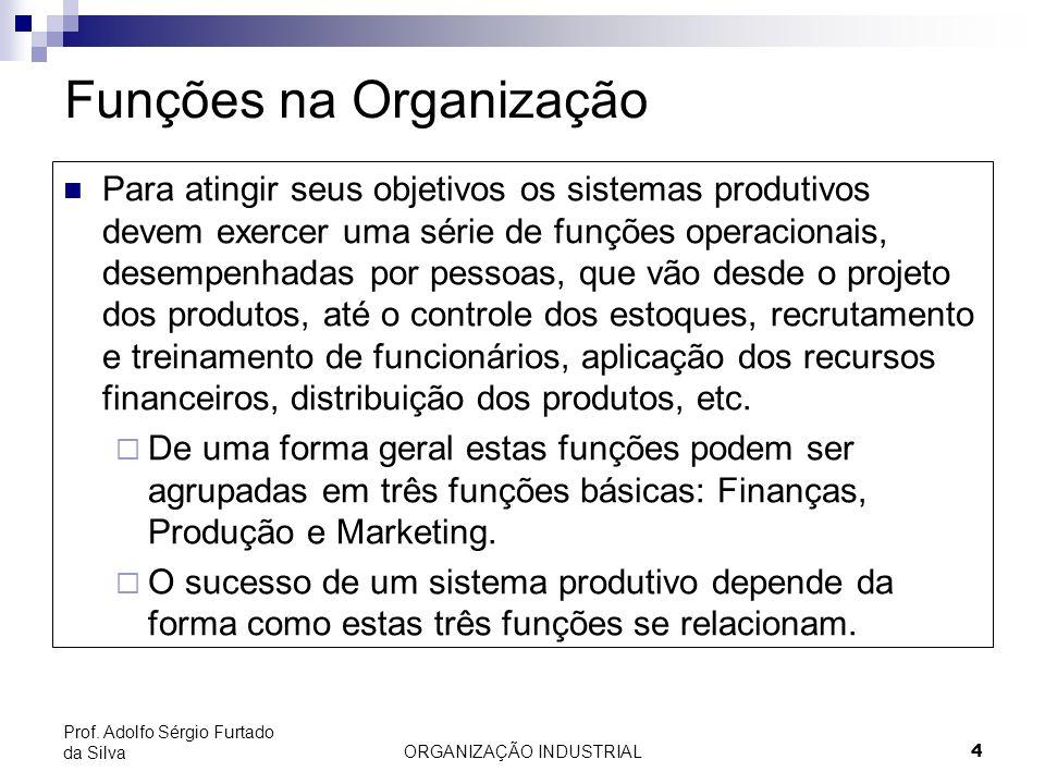 ORGANIZAÇÃO INDUSTRIAL 4 Prof. Adolfo Sérgio Furtado da Silva Funções na Organização Para atingir seus objetivos os sistemas produtivos devem exercer