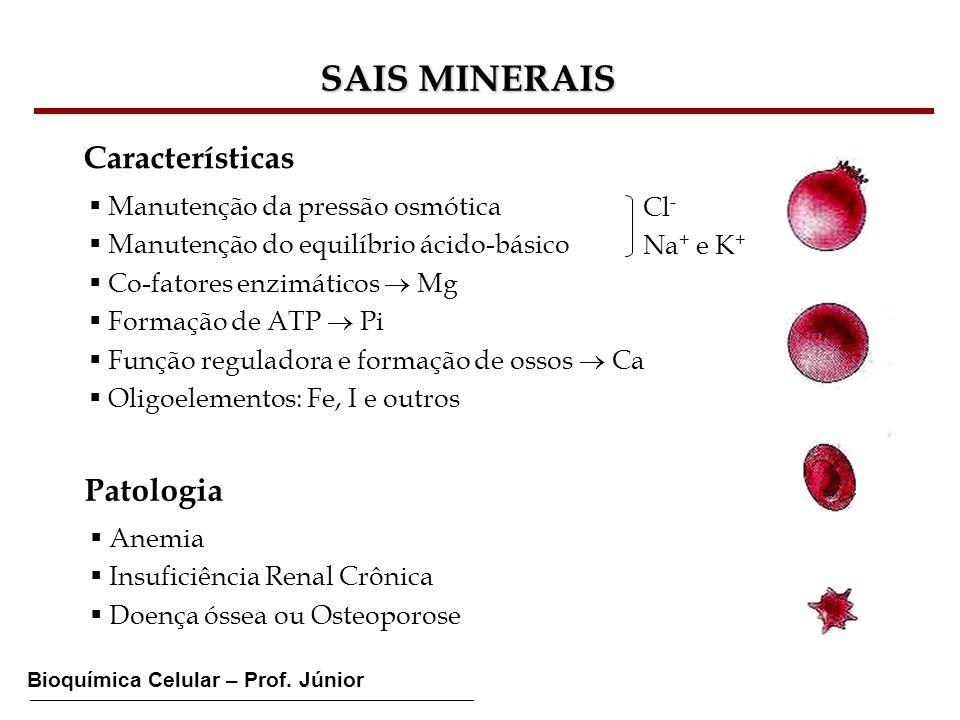 Bioquímica Celular – Prof. Júnior SAIS MINERAIS Características Manutenção da pressão osmótica Manutenção do equilíbrio ácido-básico Co-fatores enzimá