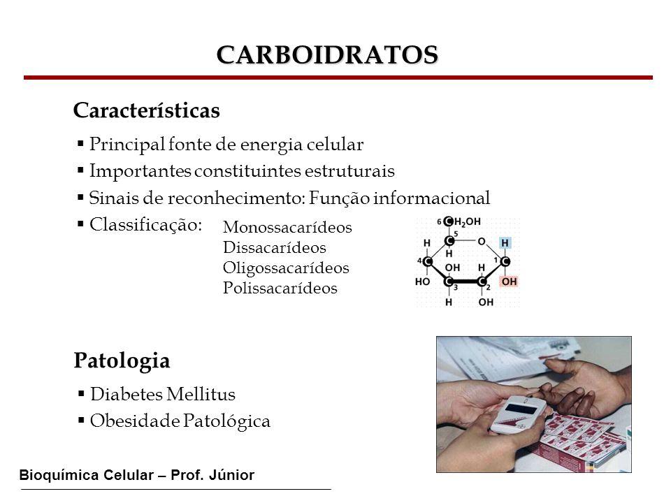 Bioquímica Celular – Prof. Júnior CARBOIDRATOS Características Principal fonte de energia celular Importantes constituintes estruturais Sinais de reco