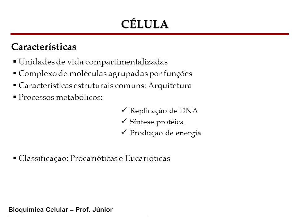 Bioquímica Celular – Prof. Júnior CÉLULA Características Unidades de vida compartimentalizadas Complexo de moléculas agrupadas por funções Característ