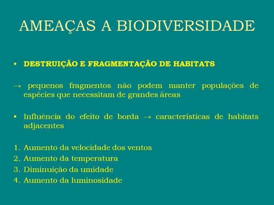 DESTRUIÇÃO E FRAGMENTAÇÃO DE HABITATS pequenos fragmentos não podem manter populações de espécies que necessitam de grandes áreas Influência do efeito