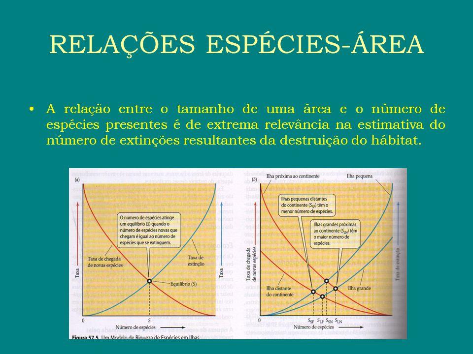 A relação entre o tamanho de uma área e o número de espécies presentes é de extrema relevância na estimativa do número de extinções resultantes da des