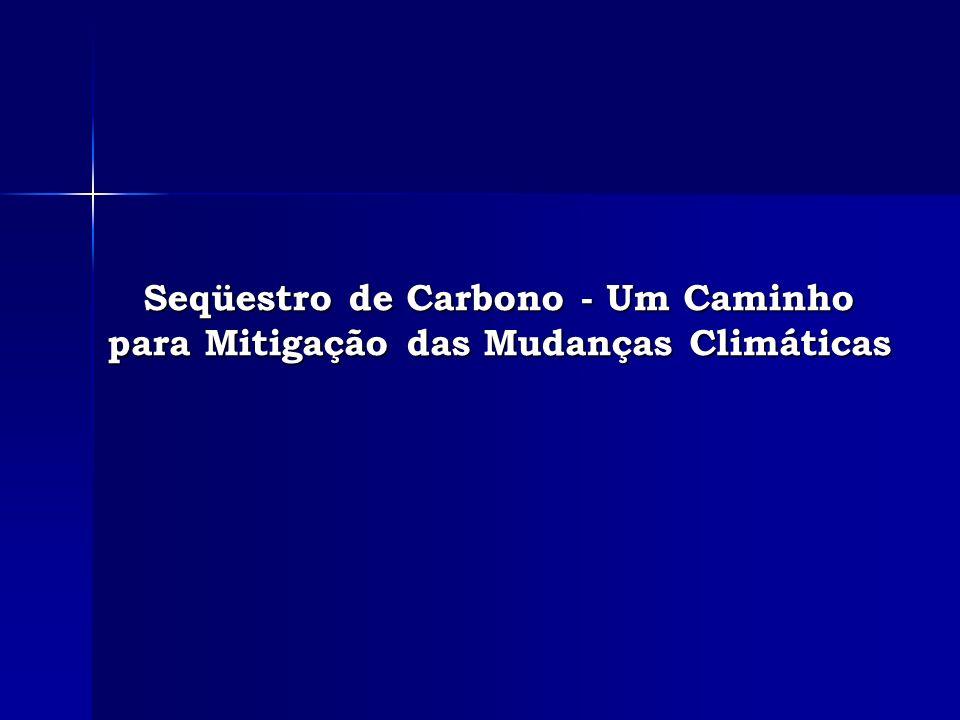 Seqüestro de Carbono - Um Caminho para Mitigação das Mudanças Climáticas