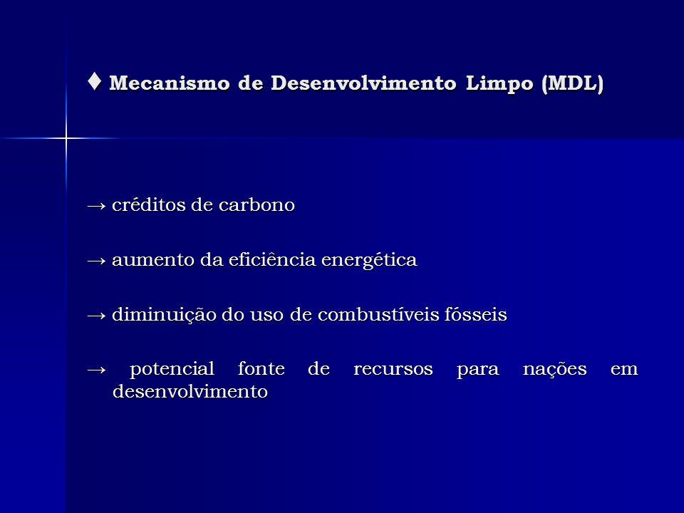 Mecanismo de Desenvolvimento Limpo (MDL) Mecanismo de Desenvolvimento Limpo (MDL) créditos de carbono créditos de carbono aumento da eficiência energé