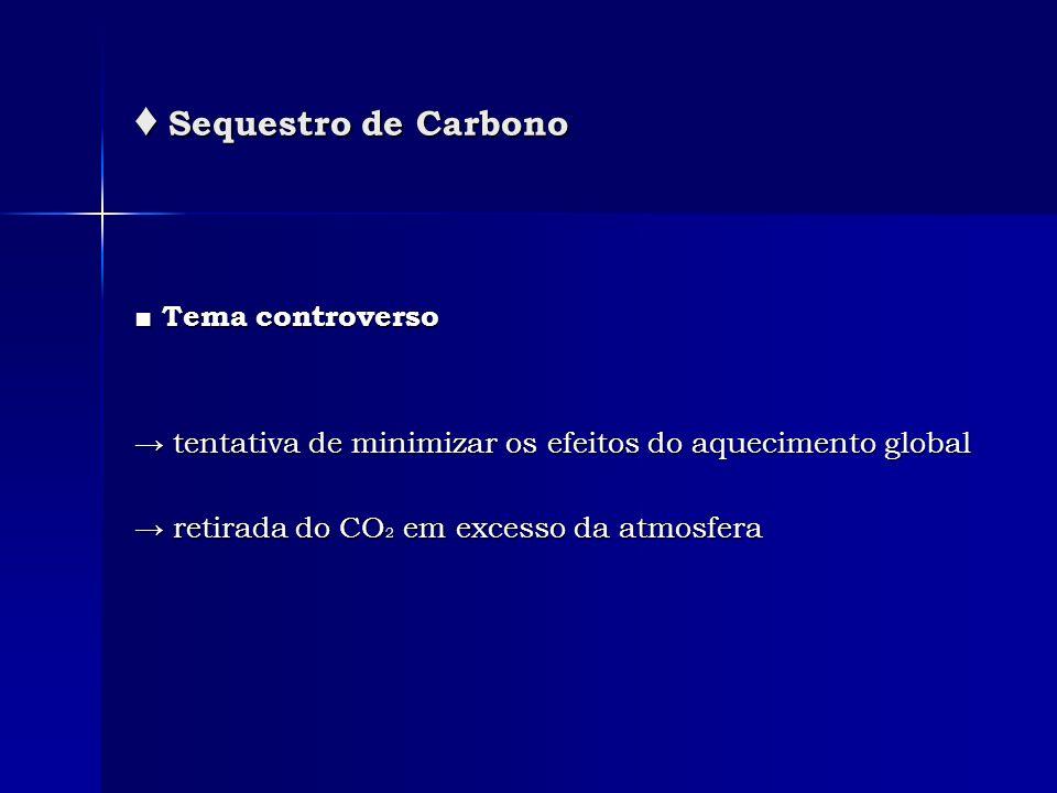 Sequestro de Carbono Sequestro de Carbono Tema controverso Tema controverso tentativa de minimizar os efeitos do aquecimento global tentativa de minim
