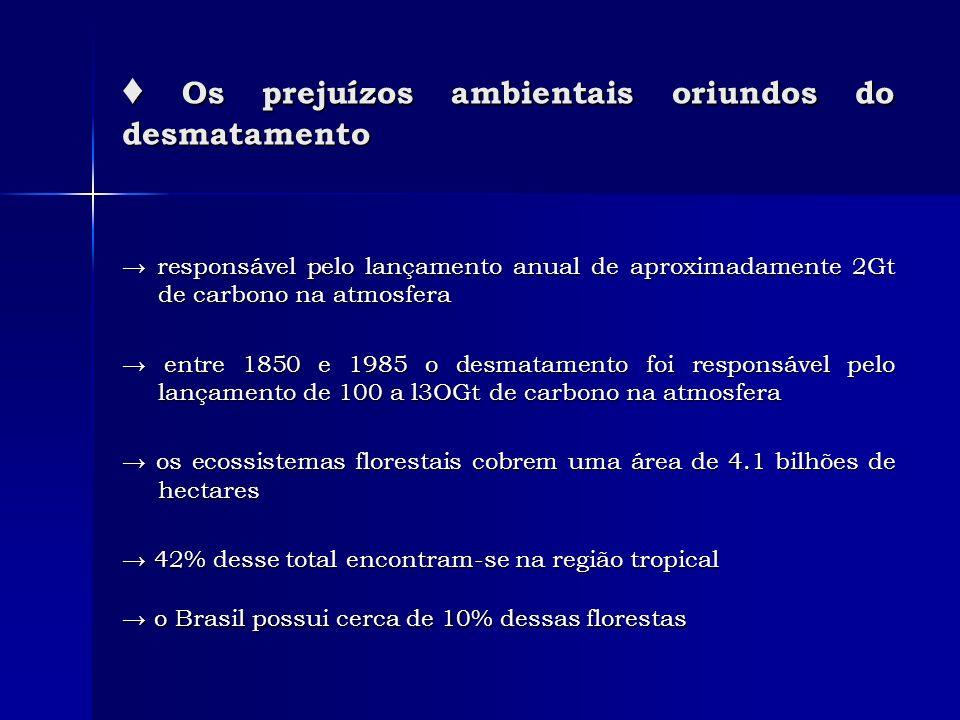 Os prejuízos ambientais oriundos do desmatamento Os prejuízos ambientais oriundos do desmatamento responsável pelo lançamento anual de aproximadamente