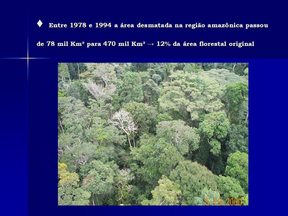 Entre 1978 e 1994 a área desmatada na região amazônica passou de 78 mil Km² para 470 mil Km² 12% da área florestal original Entre 1978 e 1994 a área d