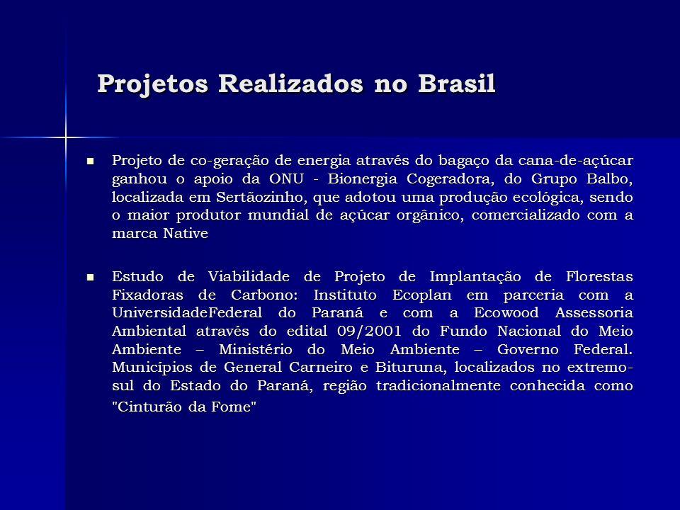 Projetos Realizados no Brasil Projetos Realizados no Brasil Projeto de co-geração de energia através do bagaço da cana-de-açúcar ganhou o apoio da ONU