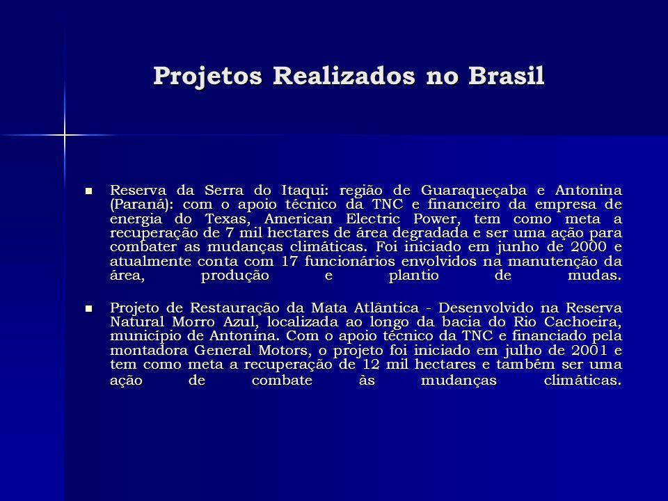 Projetos Realizados no Brasil Projetos Realizados no Brasil Reserva da Serra do Itaqui: região de Guaraqueçaba e Antonina (Paraná): com o apoio técnic