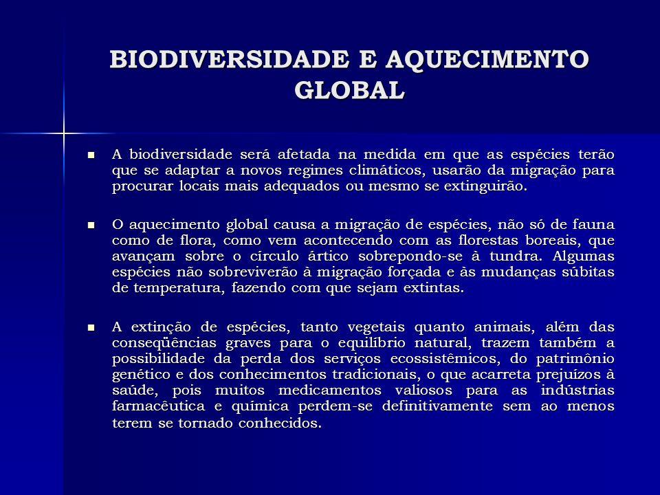 BIODIVERSIDADE E AQUECIMENTO GLOBAL A biodiversidade será afetada na medida em que as espécies terão que se adaptar a novos regimes climáticos, usarão