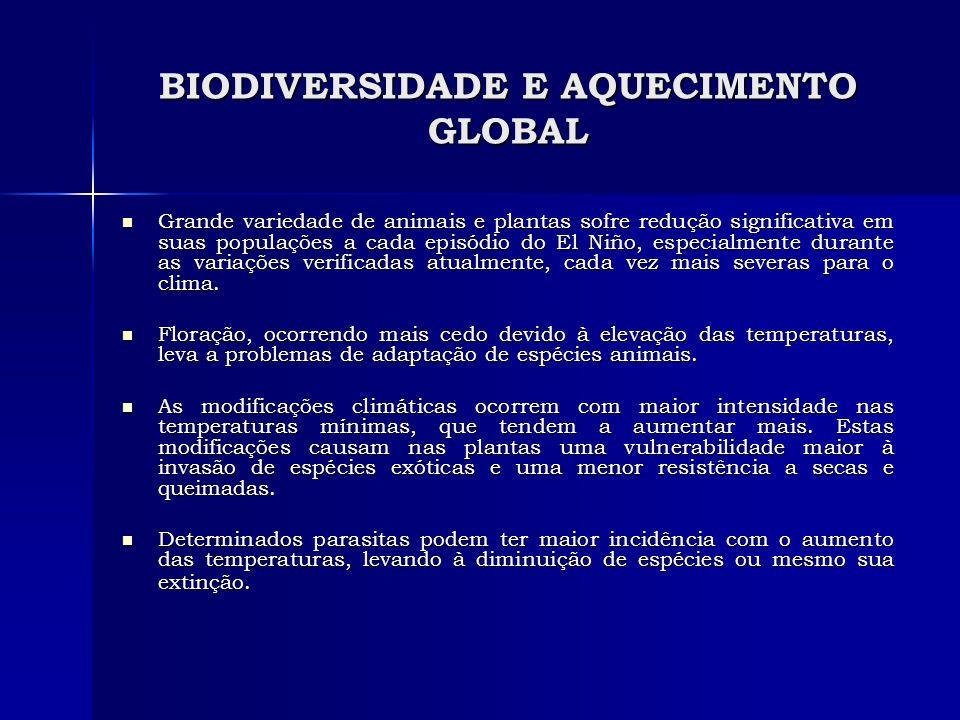 BIODIVERSIDADE E AQUECIMENTO GLOBAL Grande variedade de animais e plantas sofre redução significativa em suas populações a cada episódio do El Niño, e