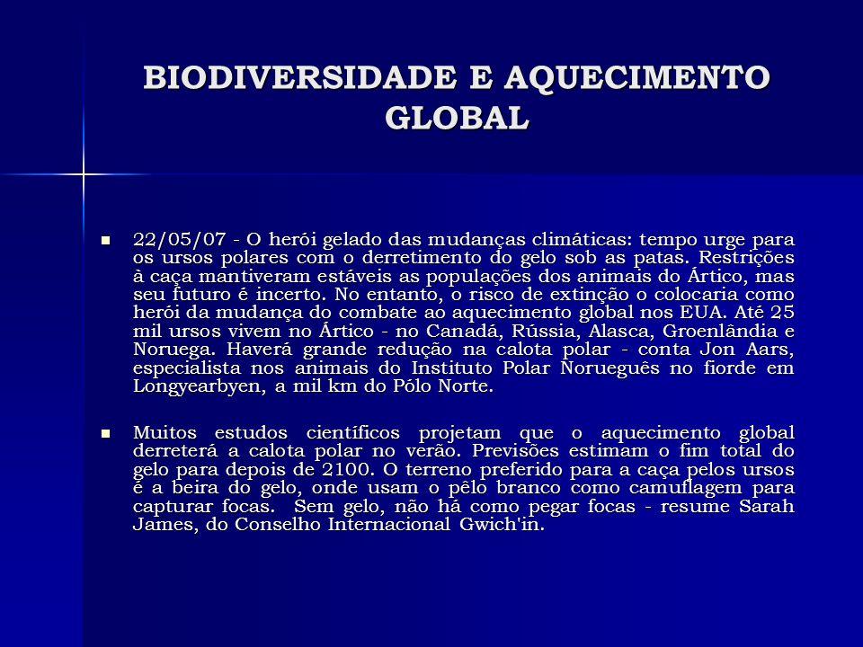 BIODIVERSIDADE E AQUECIMENTO GLOBAL 22/05/07 - O herói gelado das mudanças climáticas: tempo urge para os ursos polares com o derretimento do gelo sob