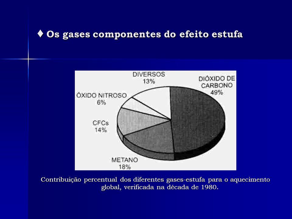 Os gases componentes do efeito estufa Os gases componentes do efeito estufa Contribuição percentual dos diferentes gases-estufa para o aquecimento glo