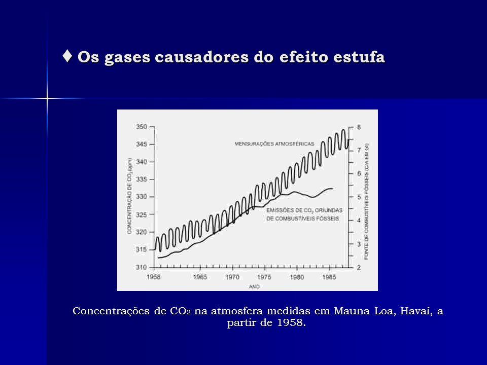 Os gases causadores do efeito estufa Os gases causadores do efeito estufa Concentrações de CO 2 na atmosfera medidas em Mauna Loa, Havaí, a partir de
