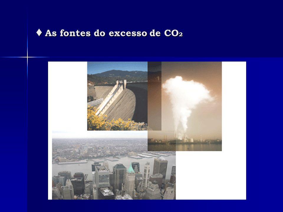 As fontes do excesso de CO 2 As fontes do excesso de CO 2