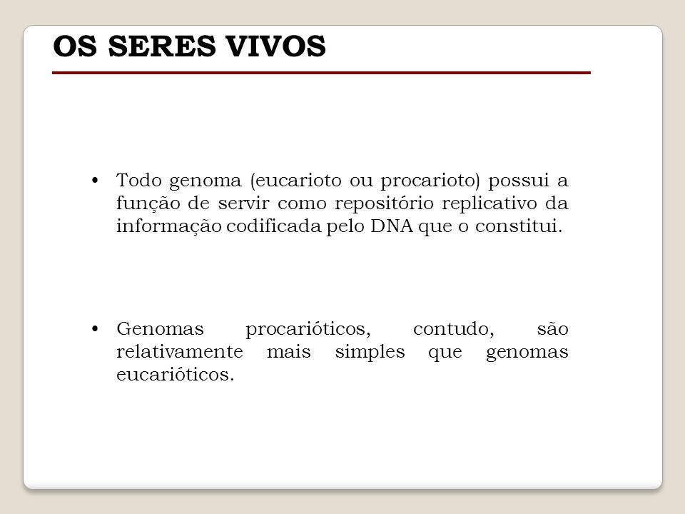 OS SERES VIVOS Todo genoma (eucarioto ou procarioto) possui a função de servir como repositório replicativo da informação codificada pelo DNA que o co