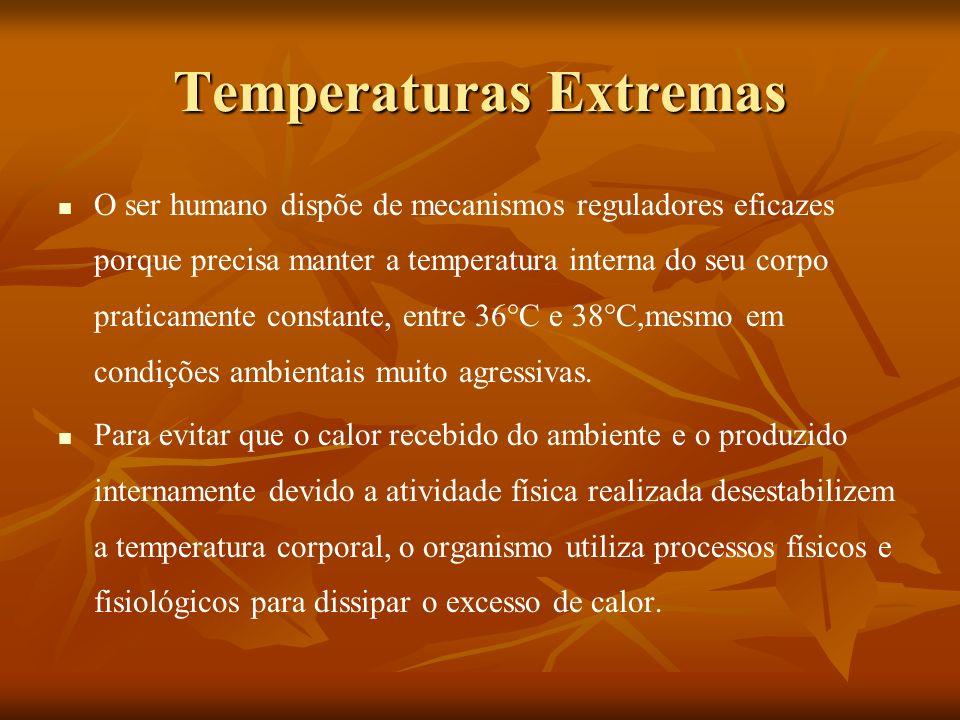 Temperaturas Extremas O ser humano dispõe de mecanismos reguladores eficazes porque precisa manter a temperatura interna do seu corpo praticamente con