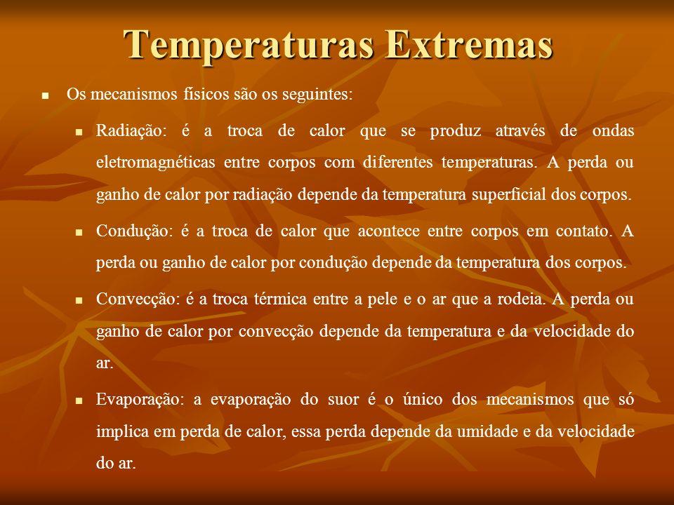 Temperaturas Extremas Os mecanismos fisiológicos mais importantes são os seguintes: No frio: redução do fluxo sanguíneo superficial e o incremento da atividade física (tremor).