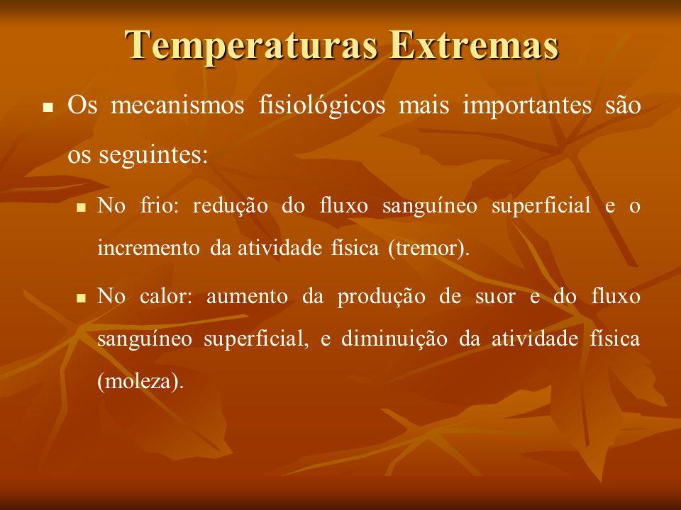Temperaturas Extremas Os efeitos mais importantes da exposição a ambientes quentes são: choque térmico, desmaios, câimbras e desidratação.
