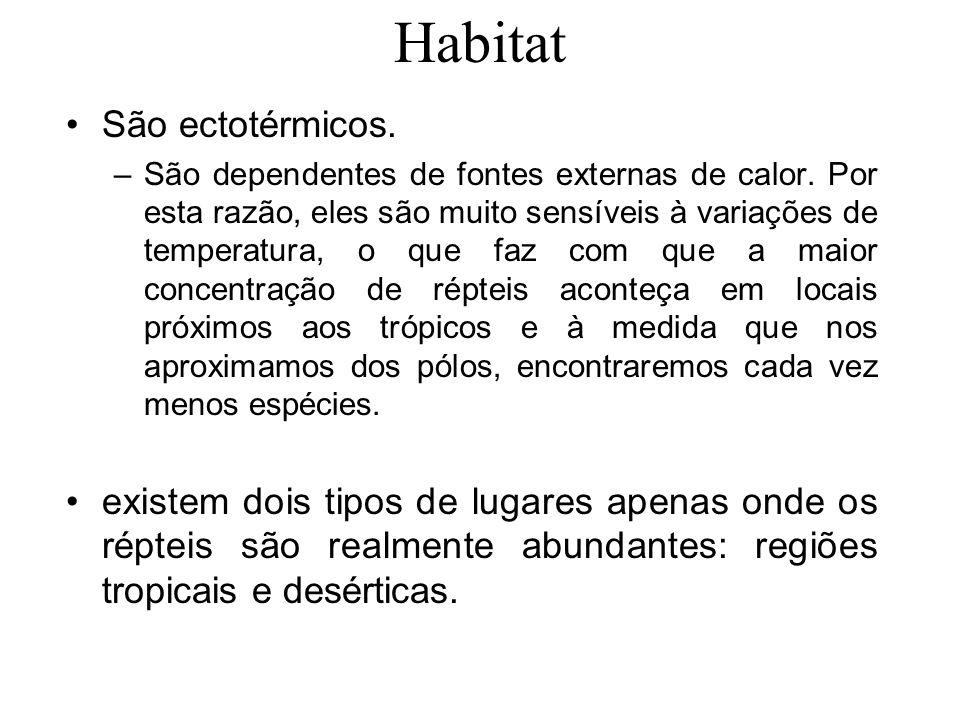 Habitat São ectotérmicos.–São dependentes de fontes externas de calor.