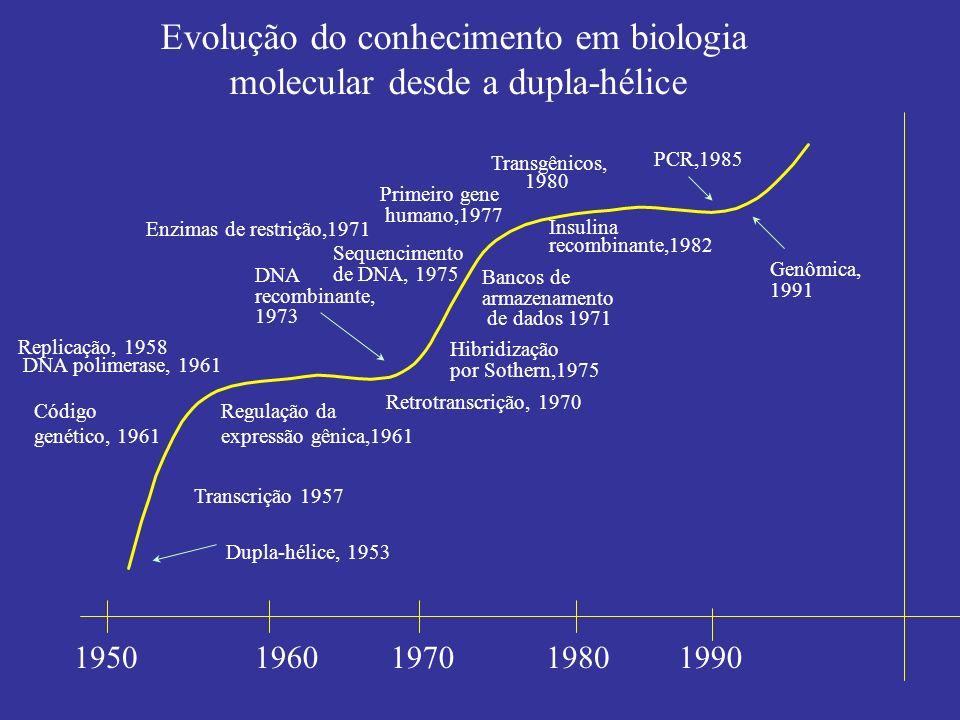 Evolução do conhecimento em biologia molecular desde a dupla-hélice 19501960 Hibridização por Sothern,1975 Genômica, 1991 Dupla-hélice, 1953 Transcriç