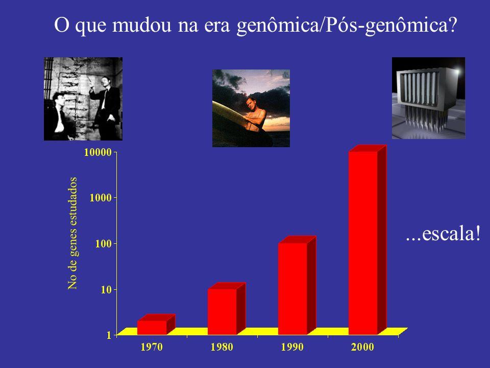 O que mudou na era genômica/Pós-genômica? No de genes estudados...escala!