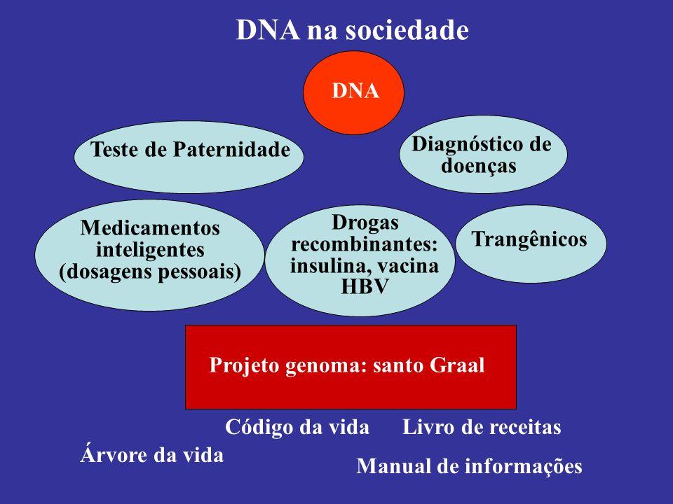 DNA na sociedade DNA Trangênicos Drogas recombinantes: insulina, vacina HBV Medicamentos inteligentes (dosagens pessoais) Diagnóstico de doenças Teste