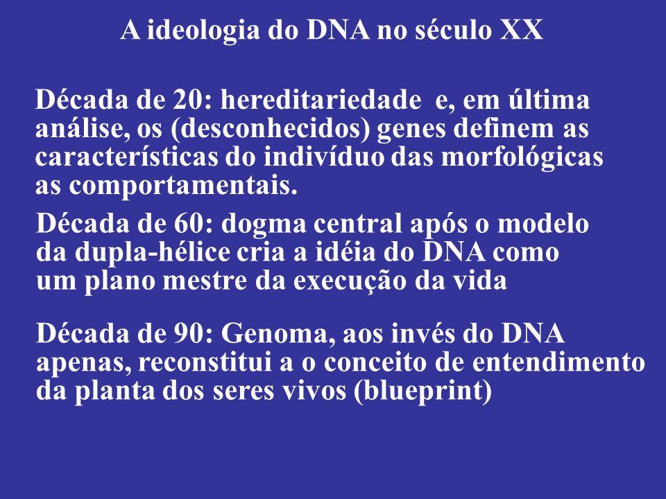A ideologia do DNA no século XX Década de 60: dogma central após o modelo da dupla-hélice cria a idéia do DNA como um plano mestre da execução da vida