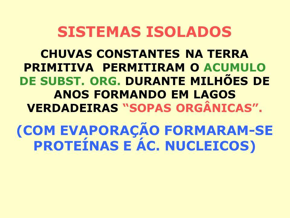 TERRA PRIMITIVA 80% CO 2, 10% CH 4, 5% CO E 5% DE N 2 A MATÉRIA DA VIDA PODE TER SE FORMADO POR GERAÇÃO ESPONTÂNEA