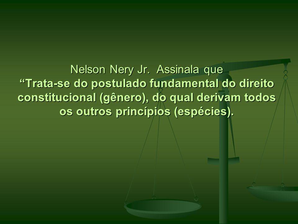 Nelson Nery Jr. Assinala que Trata-se do postulado fundamental do direito constitucional (gênero), do qual derivam todos os outros princípios (espécie