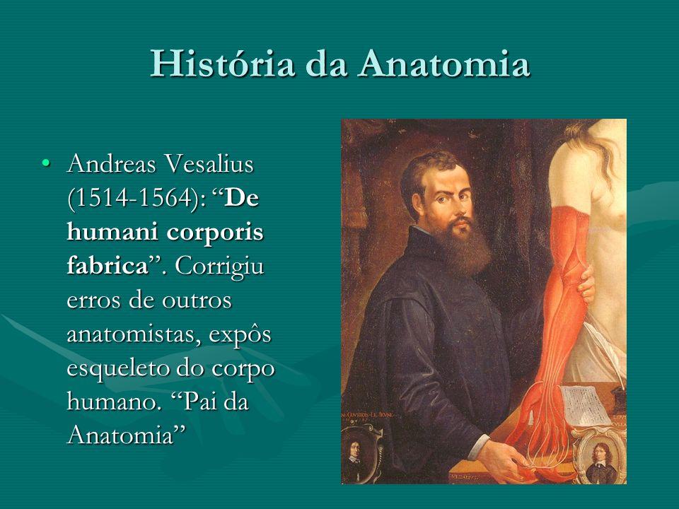 História da Anatomia Escola de Salermo: Primeira escola de Anatomia a se destacar na Europa – dissecação de animais.Escola de Salermo: Primeira escola de Anatomia a se destacar na Europa – dissecação de animais.