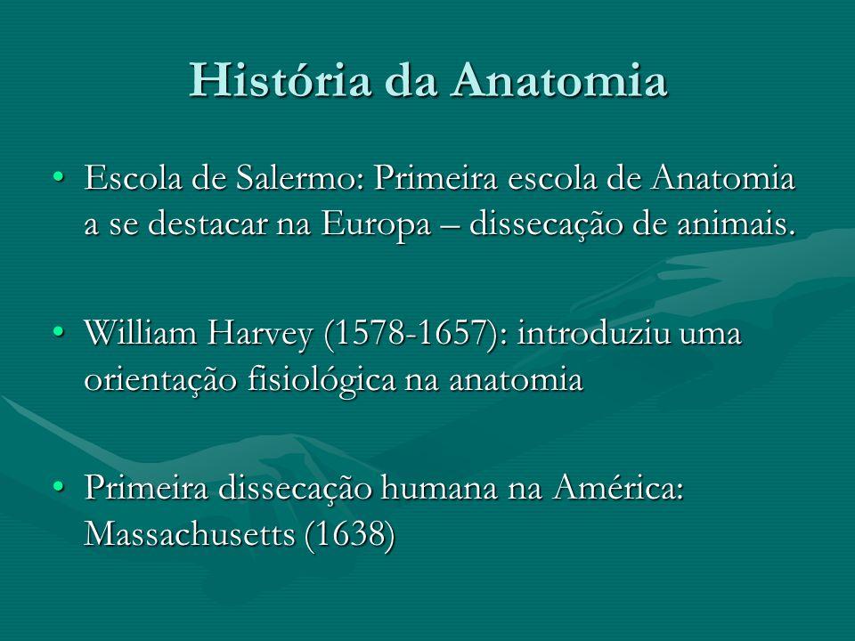 História da Anatomia Renascimento: perda das supertições e medos – evolução de várias ciências.Renascimento: perda das supertições e medos – evolução de várias ciências.