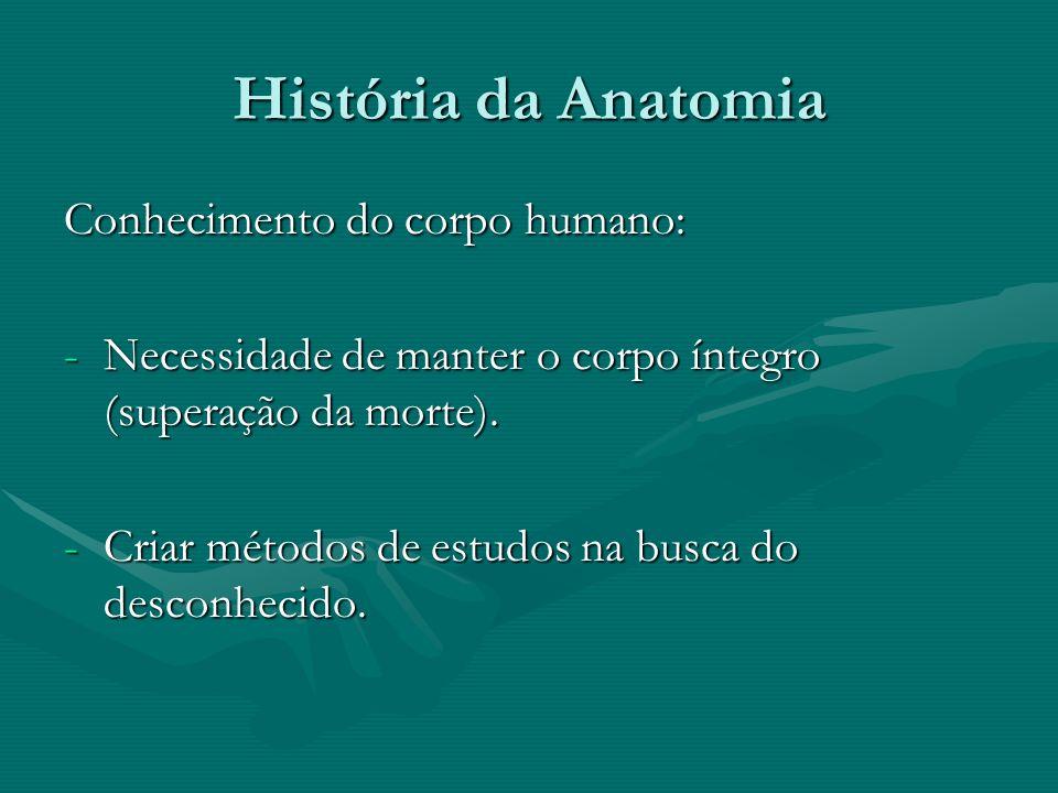 História da Anatomia Observação: Início da civilização – o homem observa outros homens e animais.Observação: Início da civilização – o homem observa outros homens e animais.