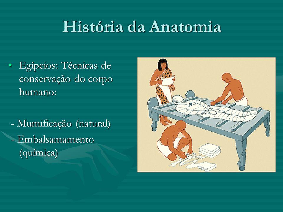 História da Anatomia Alcameon de Croton (500 a.C.): registros de observações anatômicas.Alcameon de Croton (500 a.C.): registros de observações anatômicas.