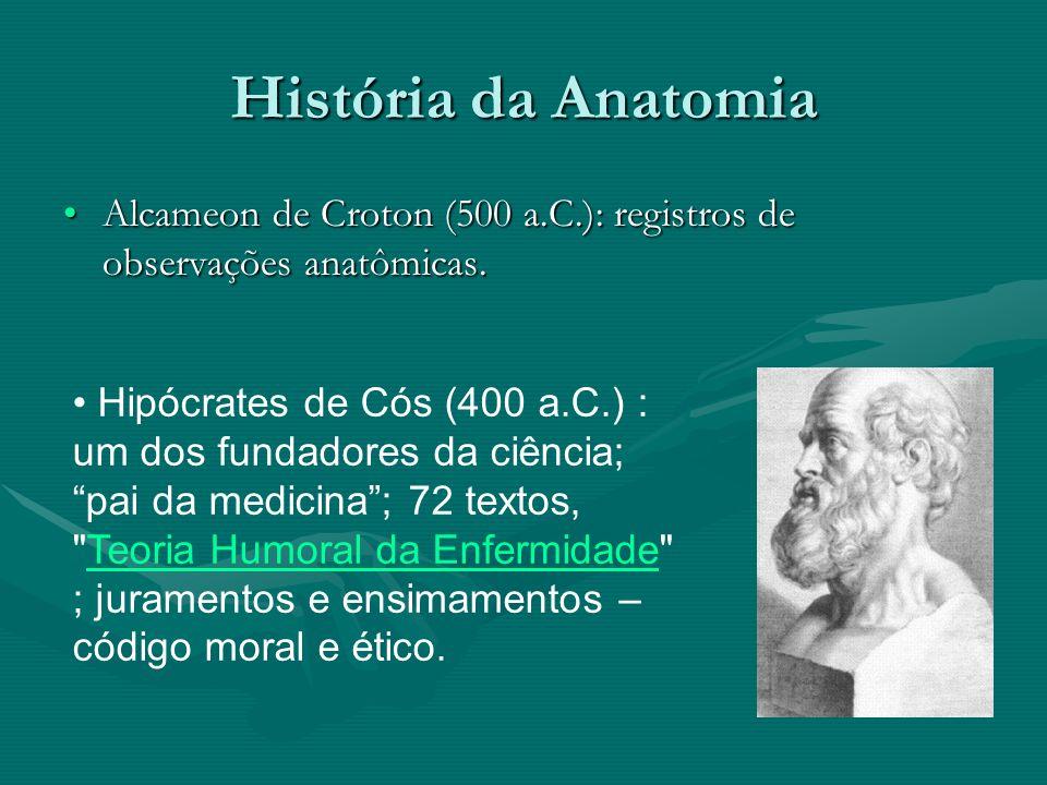 História da Anatomia Aristóteles (72 anos após Hipócrates, 384 a 322 a.C.): coração como centro das emoções; anatomia humana comparativa.
