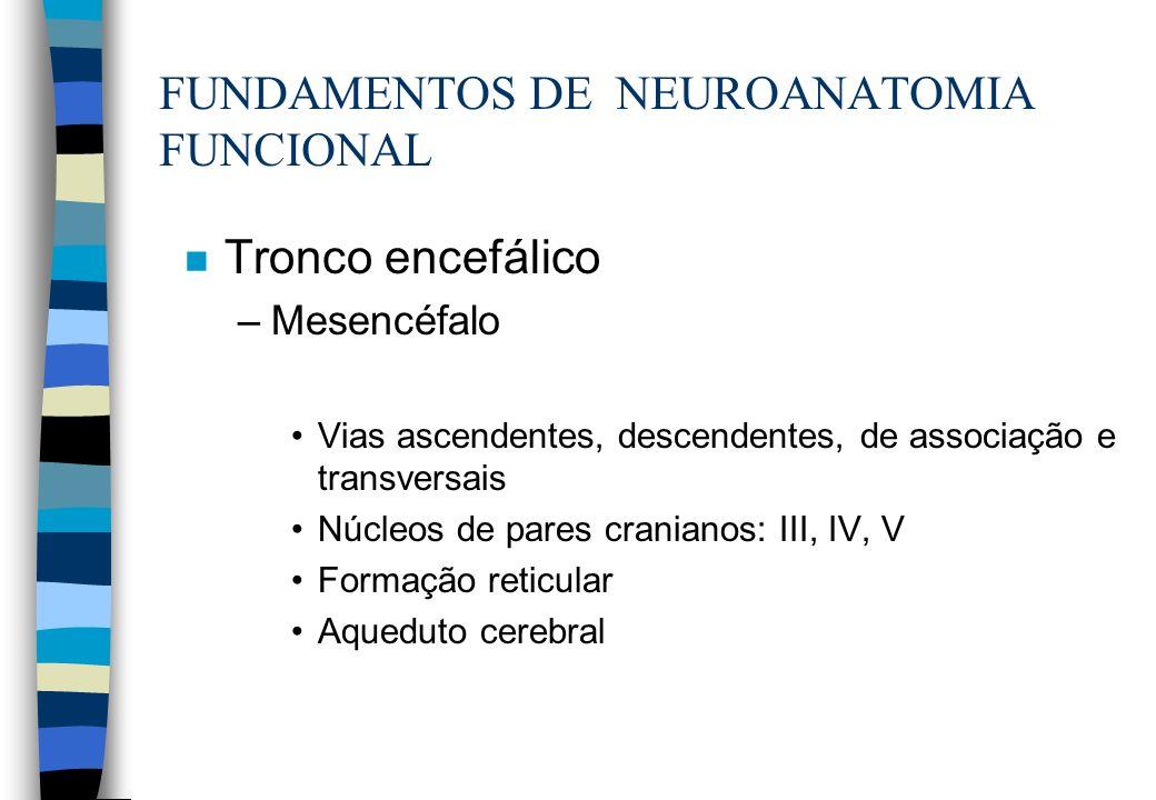 n Tronco encefálico –Mesencéfalo Vias ascendentes, descendentes, de associação e transversais Núcleos de pares cranianos: III, IV, V Formação reticula