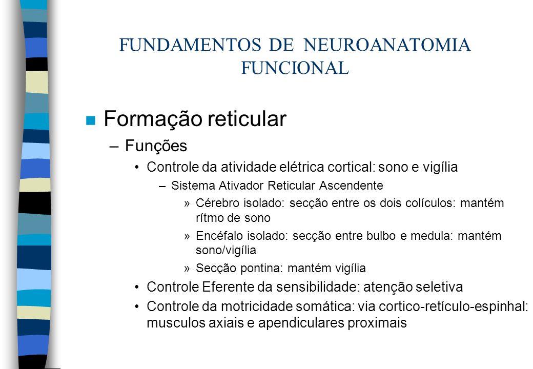 FUNDAMENTOS DE NEUROANATOMIA FUNCIONAL n Formação reticular –Funções Controle da atividade elétrica cortical: sono e vigília –Sistema Ativador Reticul