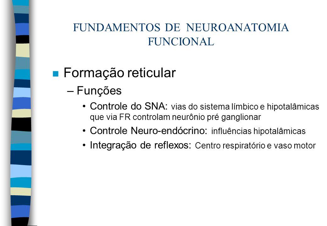 FUNDAMENTOS DE NEUROANATOMIA FUNCIONAL n Formação reticular –Funções Controle do SNA: vias do sistema límbico e hipotalâmicas que via FR controlam neu