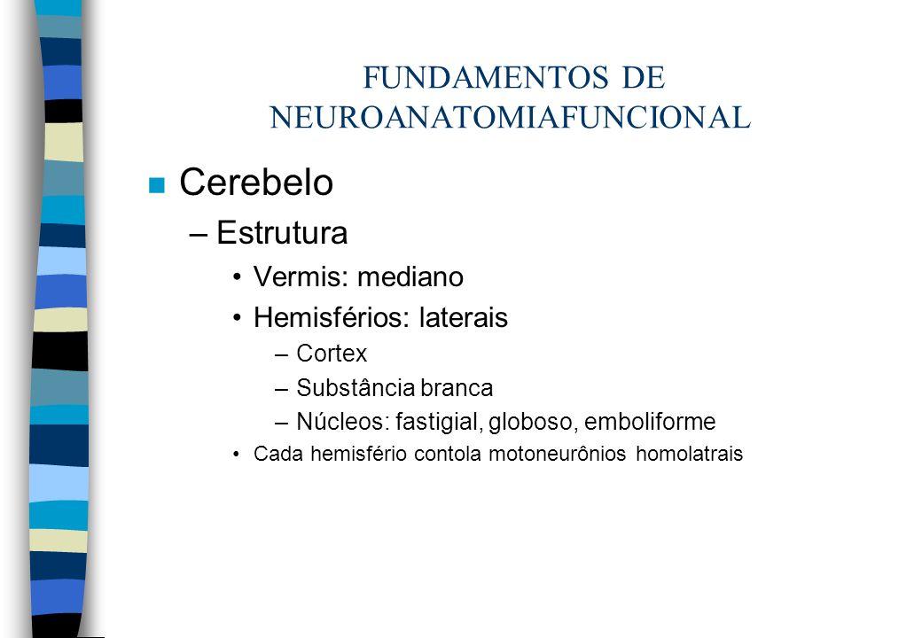 FUNDAMENTOS DE NEUROANATOMIAFUNCIONAL n Cerebelo –Estrutura Vermis: mediano Hemisférios: laterais –Cortex –Substância branca –Núcleos: fastigial, glob