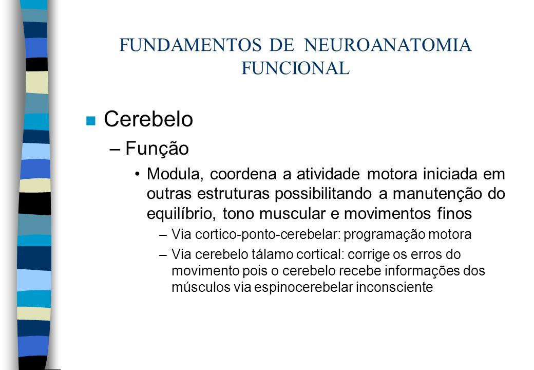 FUNDAMENTOS DE NEUROANATOMIA FUNCIONAL n Cerebelo –Função Modula, coordena a atividade motora iniciada em outras estruturas possibilitando a manutençã