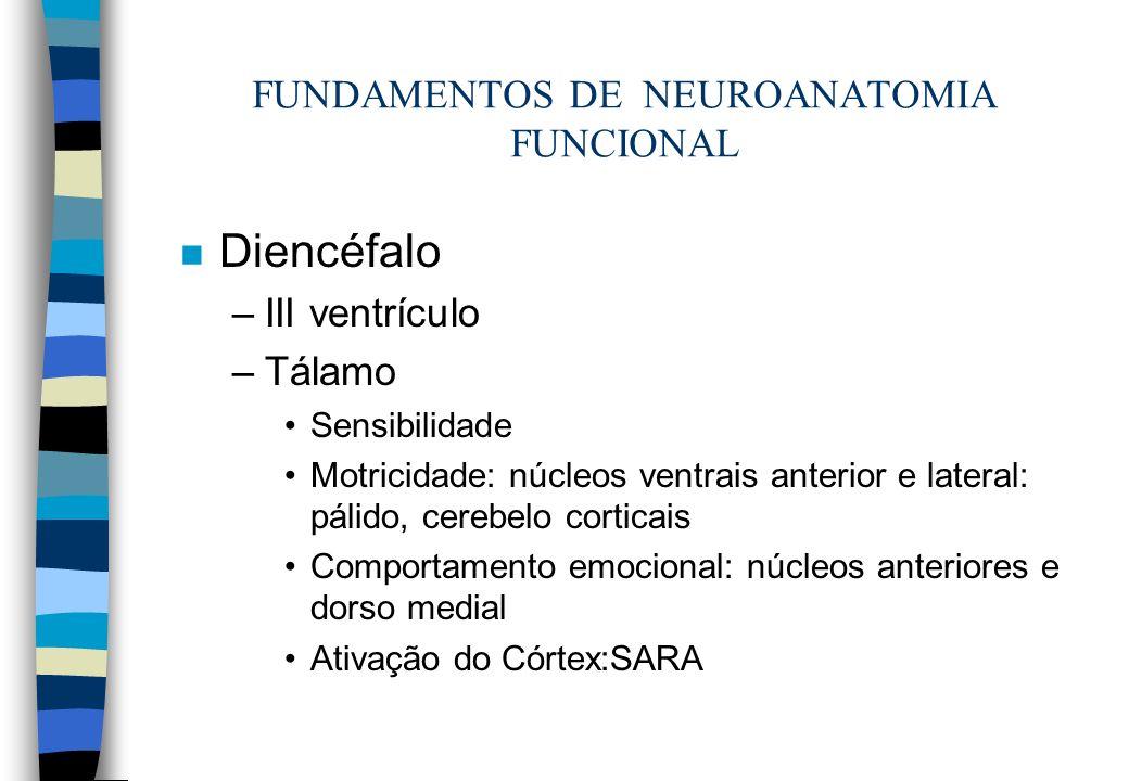 FUNDAMENTOS DE NEUROANATOMIA FUNCIONAL n Diencéfalo –III ventrículo –Tálamo Sensibilidade Motricidade: núcleos ventrais anterior e lateral: pálido, ce