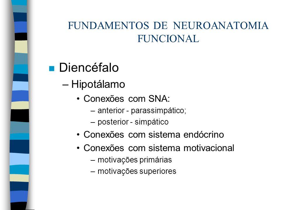 n Diencéfalo –Hipotálamo Conexões com SNA: –anterior - parassimpático; –posterior - simpático Conexões com sistema endócrino Conexões com sistema moti