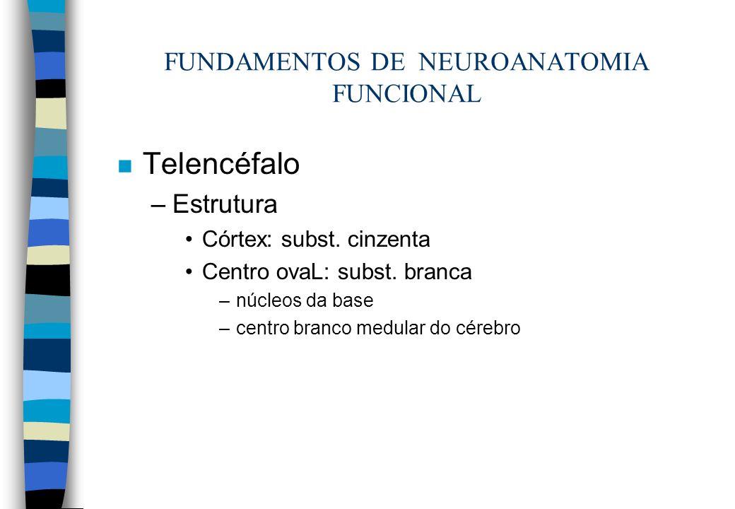 n Telencéfalo –Estrutura Córtex: subst. cinzenta Centro ovaL: subst. branca –núcleos da base –centro branco medular do cérebro