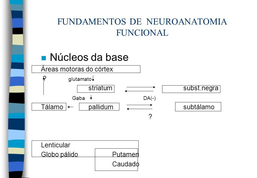 FUNDAMENTOS DE NEUROANATOMIA FUNCIONAL n Núcleos da base Áreas motoras do córtex ? glutamato striatumsubst.negra Gaba DA(-) Tálamopallidumsubtálamo ?
