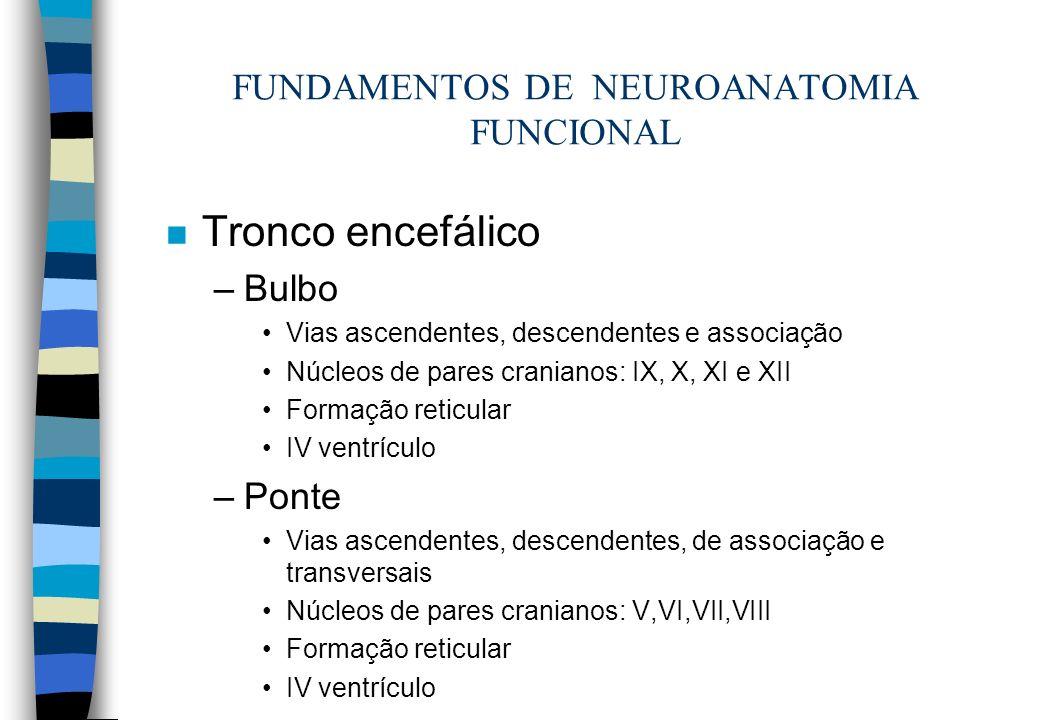 n Tronco encefálico –Bulbo Vias ascendentes, descendentes e associação Núcleos de pares cranianos: IX, X, XI e XII Formação reticular IV ventrículo –P