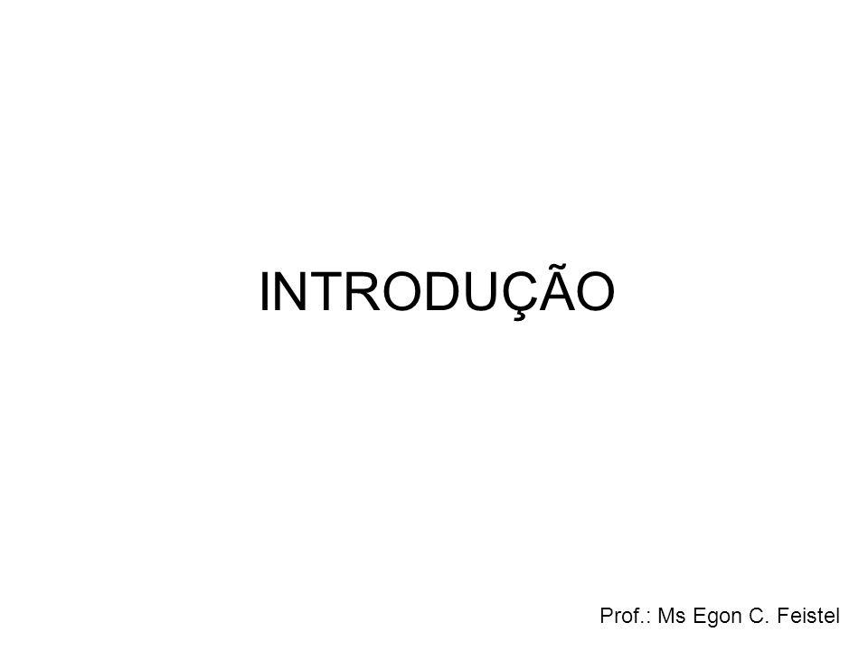 INTRODUÇÃO Prof.: Ms Egon C. Feistel
