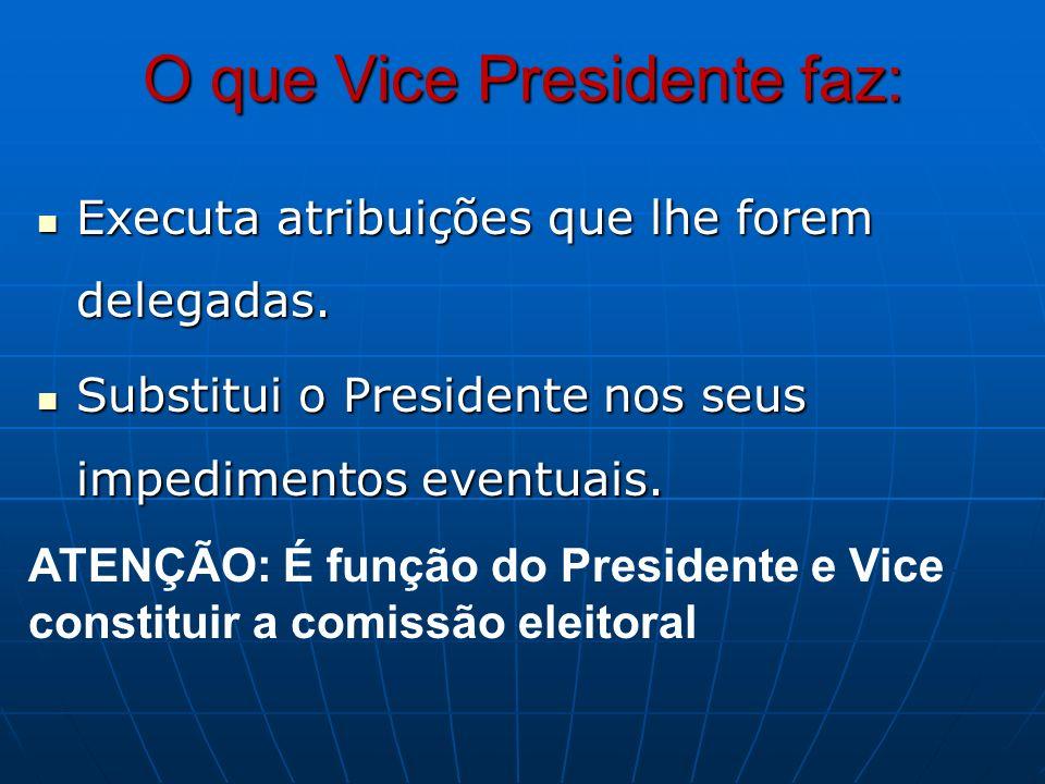 O que Vice Presidente faz: Executa atribuições que lhe forem delegadas. Executa atribuições que lhe forem delegadas. Substitui o Presidente nos seus i