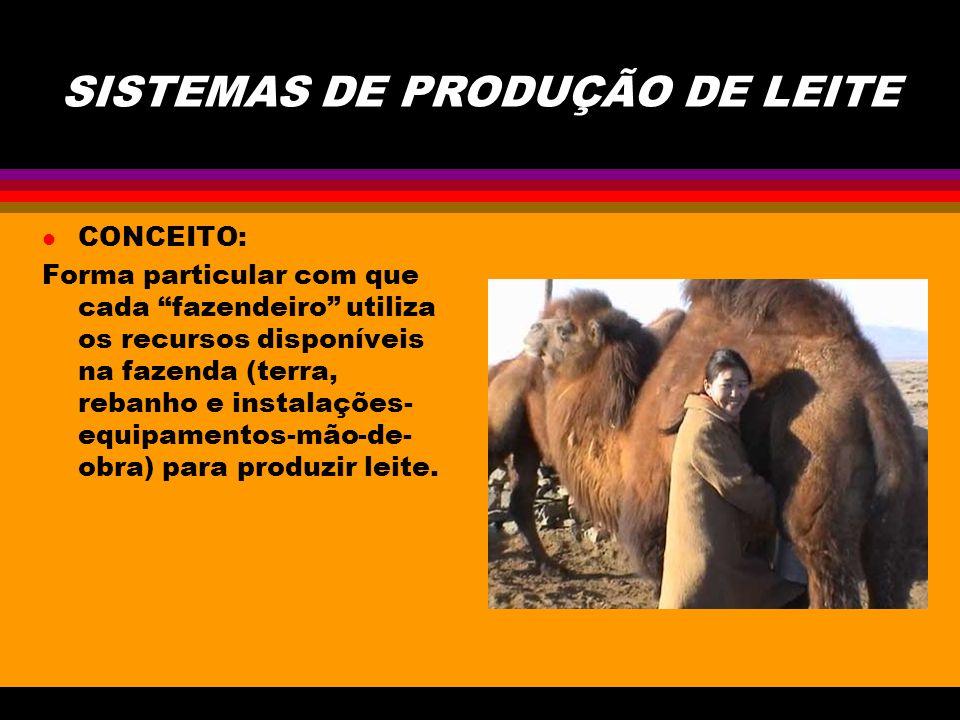 SISTEMAS DE PRODUÇÃO DE LEITE l CONCEITO: Forma particular com que cada fazendeiro utiliza os recursos disponíveis na fazenda (terra, rebanho e instalações- equipamentos-mão-de- obra) para produzir leite.