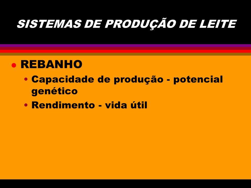 SISTEMAS DE PRODUÇÃO DE LEITE l REBANHO Capacidade de produção - potencial genético Rendimento - vida útil